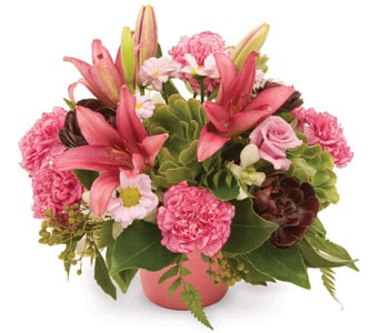 Perfect Posy - fast gift delivery australia wide