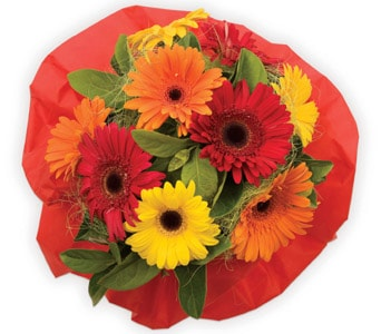 Bright Delight for flower delivery australia wide