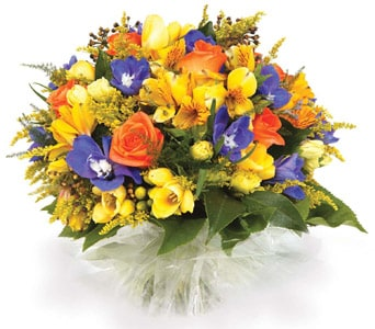 Sweet Treasure in Springwood, Blue Mountains , Springwood Florist