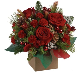 Christmas Mystic for flower delivery australia wide