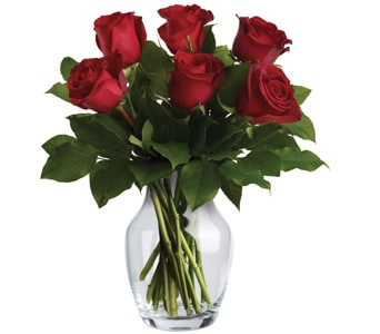 Endless Love in Beerwah , Beerwah Flowers & Gifts