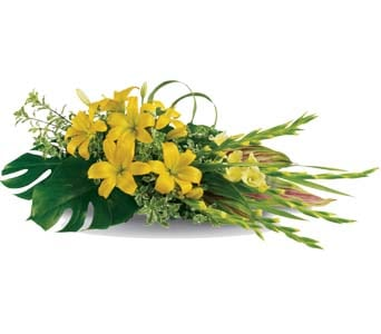 Warm Thoughts for flower delivery australia wide