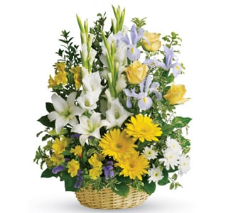 Basket of Memories in SEA LAKE , FARMYARD FLOWERS
