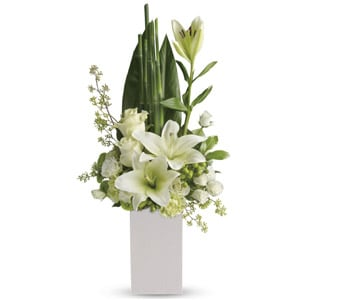 Peace and Harmony for flower delivery australia wide