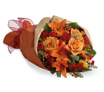 Sunset Dreams in Orange , Classic Country Rose