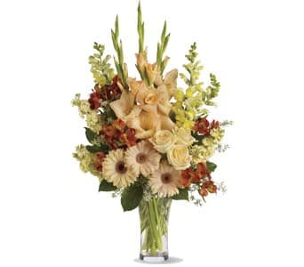 Summer's Light for flower delivery australia wide
