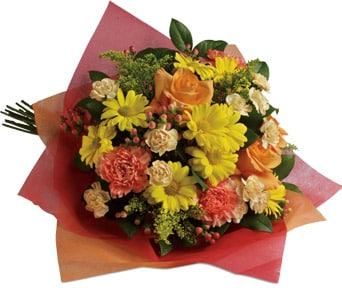 Playful Posies in Orange , Classic Country Rose