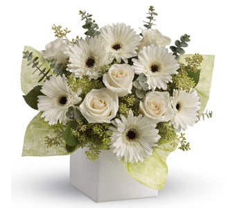 Timeless Treasure for flower delivery australia wide