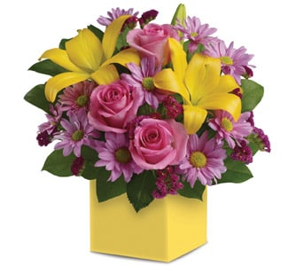 Serenade in Midland , Abunch Flowers Midland Florist
