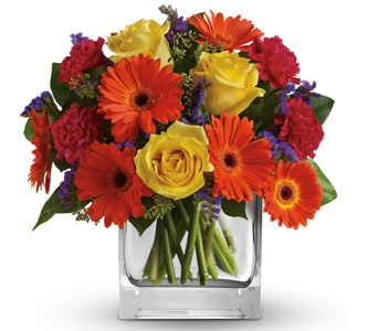 Citrus Splash for flower delivery australia wide