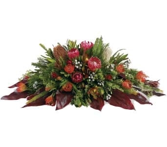 Gwandalan in Glenelg, Adelaide , Bay Junction Florist