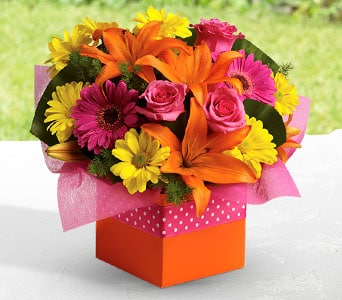 Starburst Splash in Orange , Jenisa Florist & Gifts