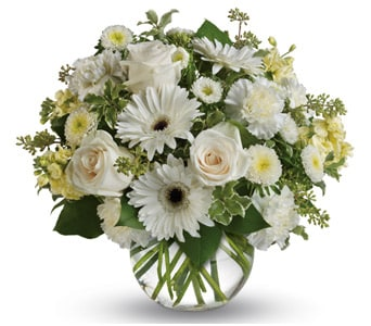Isle of White in rockhampton , petals florist network