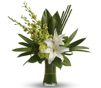 Splendour for flower delivery australia wide