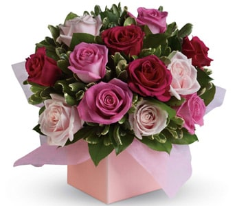 Blushing Roses for flower delivery New Zealand wide