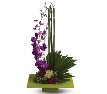 Zen Artistry in Orange NSW, Bradley's Florist