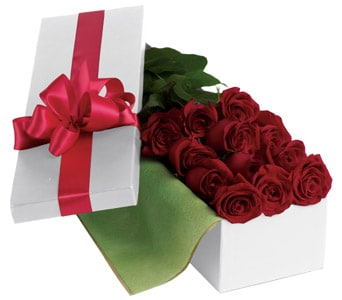 Roses For You in Balwyn North , Bloomsville Flowers And Gifts