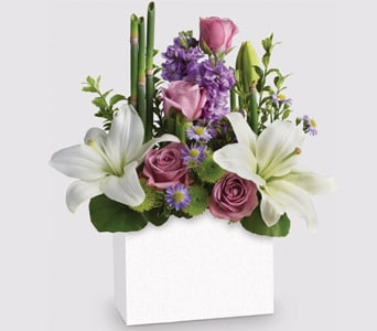 Kissed with Bliss for flower delivery australia wide