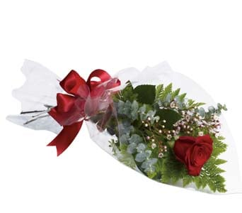 The One and Only for flower delivery new zealand wide