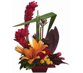 Tropical Bliss for flower delivery new zealand wide