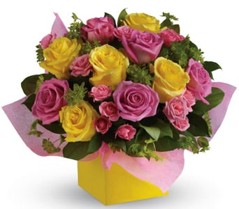 Rosy Sunshine for flower delivery new zealand wide