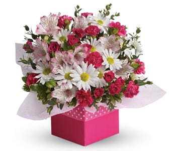 Celebration flowers gifts petals network polka dot for flower delivery australia wide negle Choice Image