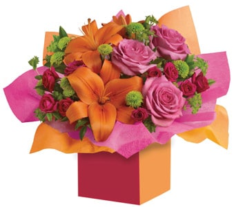 Make a Wish in Orange , Classic Country Rose