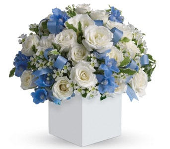 Celebrating Baby Boy in toorak , petals florist network