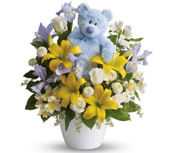 Cuddles for Him in SEA LAKE , FARMYARD FLOWERS