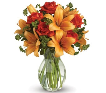 Fiery Beauty in Orange NSW, Bradley's Florist