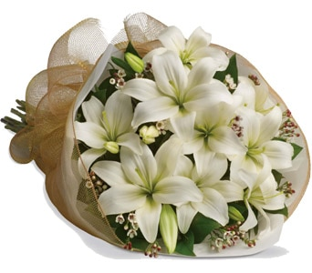 White Delight for flower delivery United Kingdom wide