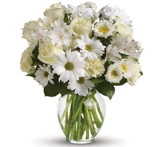 Purest Intentions for flower delivery united kingdom wide