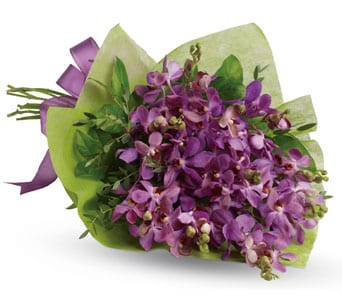 Purple Perfection for flower delivery united kingdom wide