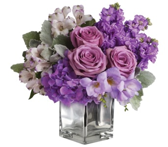 Lavender Mum in Hackett , Orchid And Vine Florist