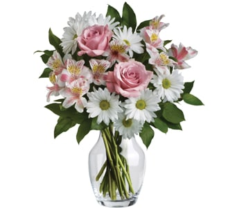Sincere Mum in Silverwater, Sydney , Rays Florist And Gifts