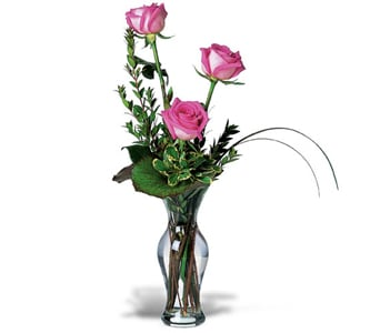 Tender Trio for flower delivery australia wide