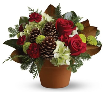 Country Christmas for flower delivery new zealand wide