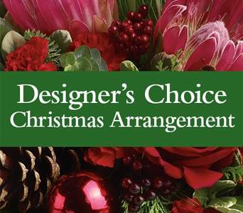 Designer's Choice Christmas Arrangement for flower delivery new zealand wide