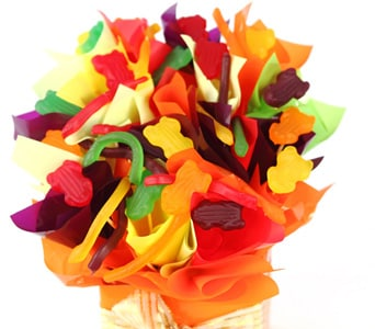 Jungle Jellies - fast gift delivery australia wide