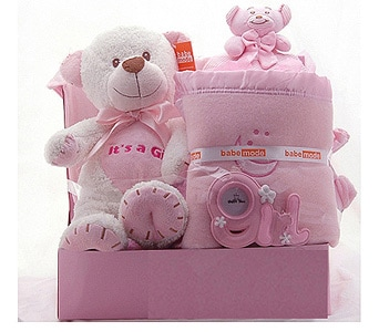 Baby Gift Basket for Girls - fast gift delivery australia wide
