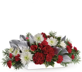Christmas Magic for flower delivery new zealand wide