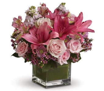 Hopeless Romantic in Forster , Forster Flowers