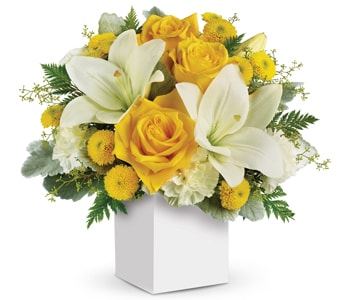 Golden Laughter in Ballarat , Boronia Exclusive Florists