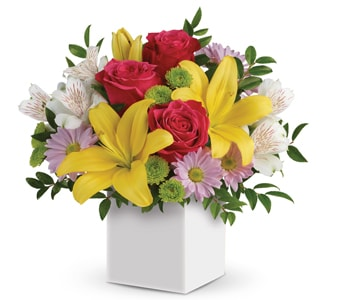 Perfect Delight in Coolangatta , Coolangatta Florist