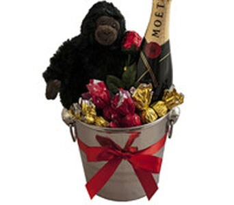 Gorilla and Moet - fast gift delivery Australia wide