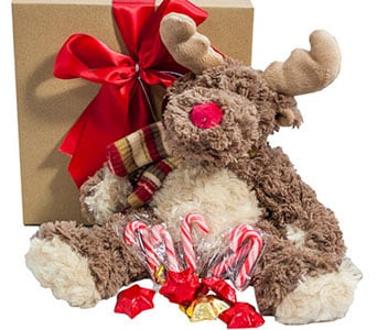 Reindeer Delivery! - fast gift delivery australia wide