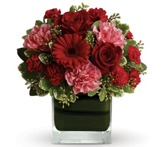 Together Forever in Nowra , Hyams Nowra Florist