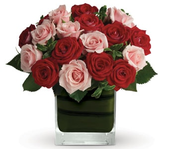 Sweetheart Forever for flower delivery new zealand wide