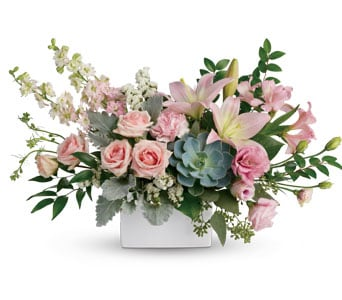 Universal Love for flower delivery australia wide