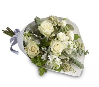 Abelia for flower delivery new zealand wide